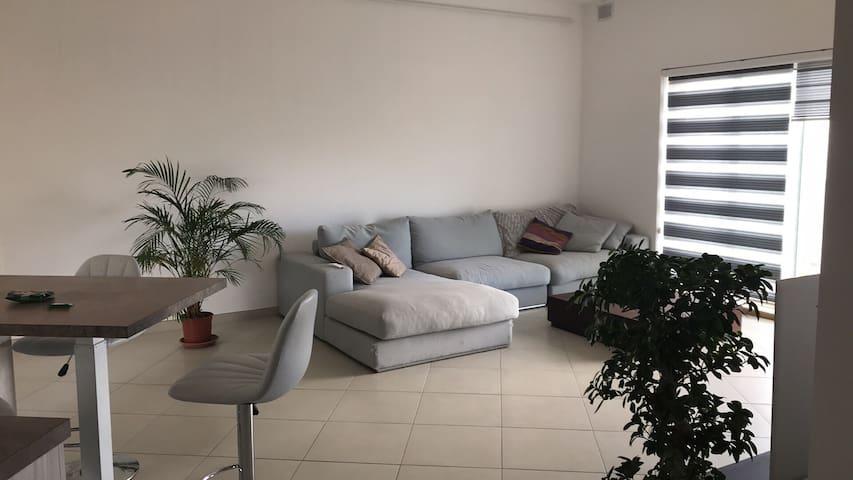A modern light-filled apartment