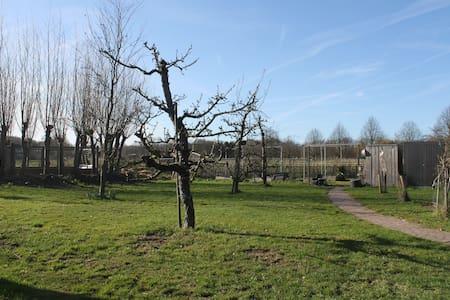 Een heerlijke eigen plek op de Brabantse Wal!