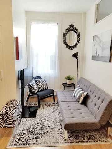 Living Room Area (sofa bed)