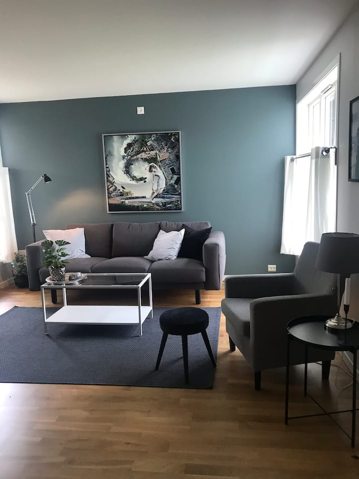 Cosy apartment close to city center, free parking