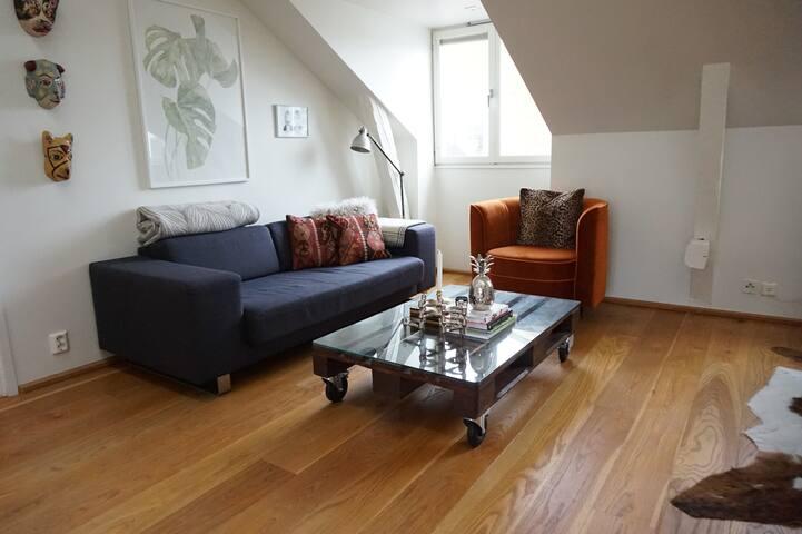 Unique Spacious Loft Apartment, Mariatorget