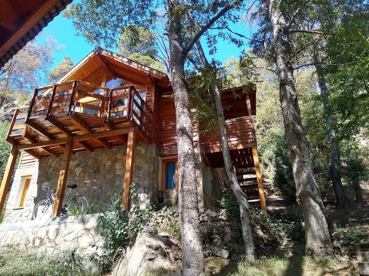 Casa del Bosque San Martin de los Andes