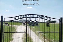 Front gate to the property...turn left to the barn house!