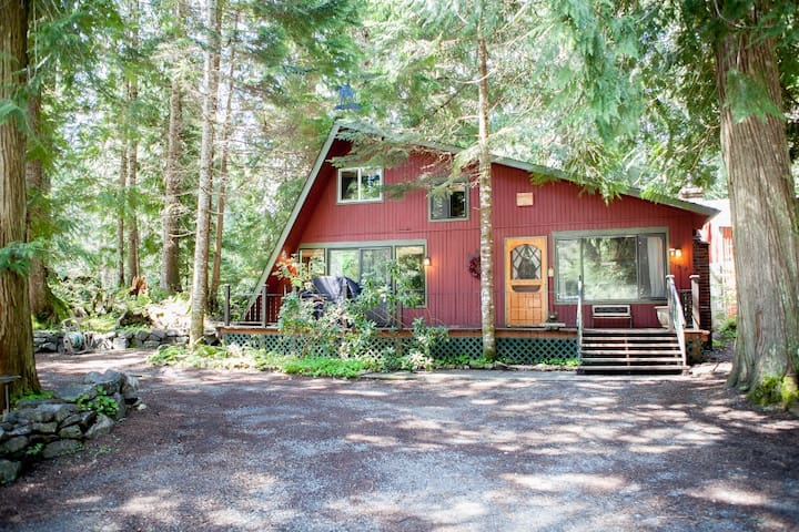 Dog-Friendly Cabin with Hot Tub, Fireplace, & WiFi
