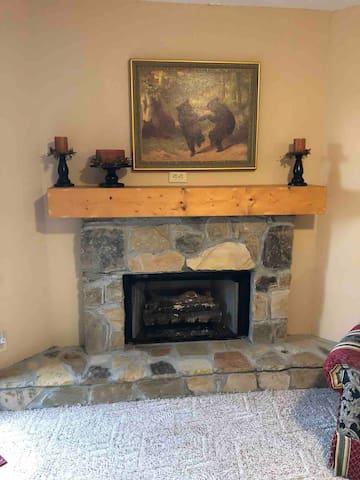 Warming gas fireplace