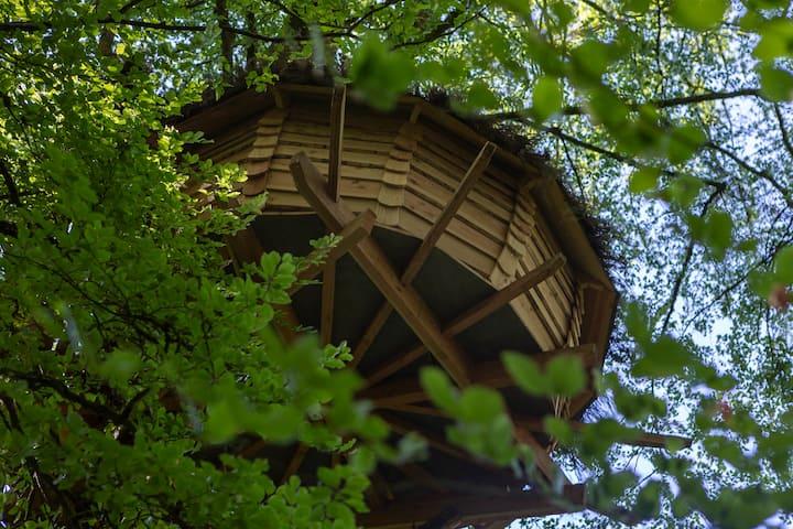 Cabane dans les arbres - Bulle des fées -