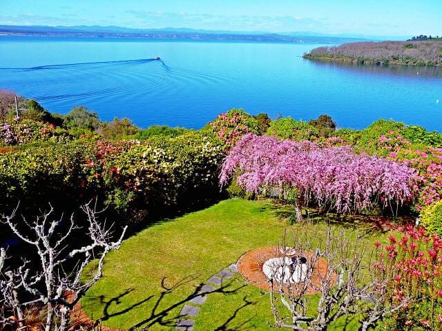 Acacia View - Taupo - Apartment