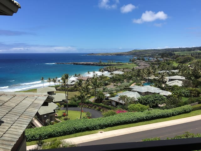 Paradise, best view, best price! APRIL $ REDUCTION - Kapalua