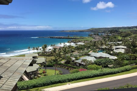 Paradise, best view, best price! - 卡普鲁亚 (Kapalua)