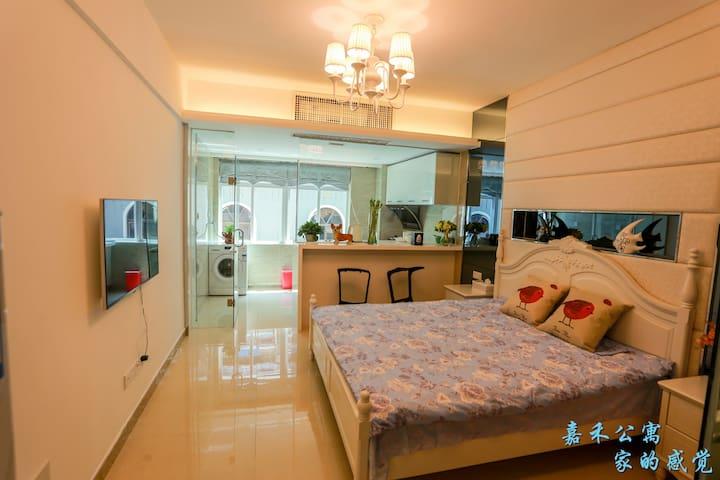 三亚大东海嘉禾公寓(三亚吉阳珈荷旅租)舒适大床房