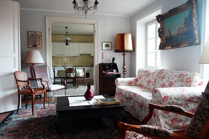 Sunny flat in the historical centre - Страсбург - Квартира
