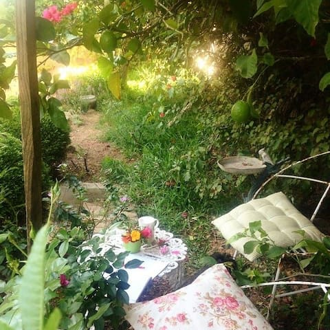 A little nook to relax near the lemon tree.
