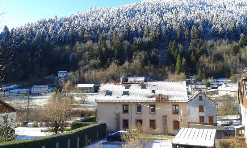 Spacious flat near ski resort - Plainfaing - Lägenhet