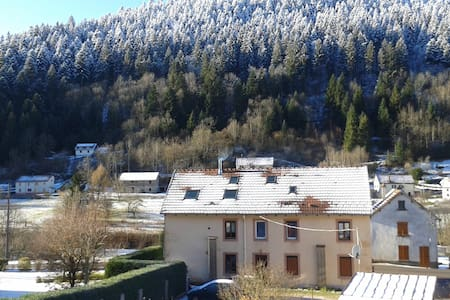 Spacious flat near ski resort - Plainfaing