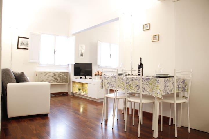 Art Apartment Signoria - Firenze - Apartment