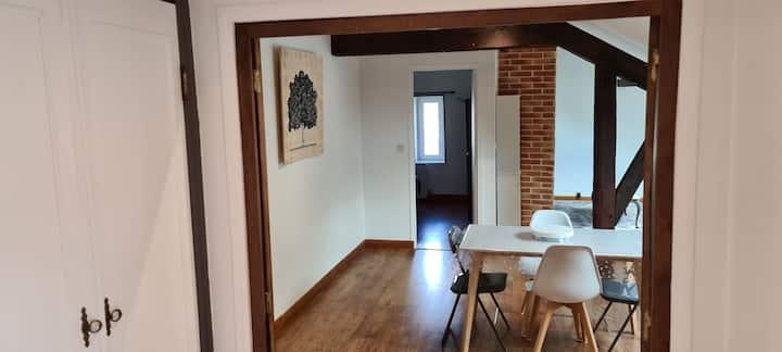 Appartement chaleureux Cosne sur loire