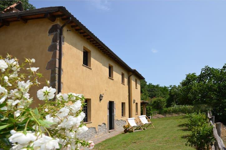 Le Coste your countryside home near Orvieto - Castiglione In Teverina - Villa