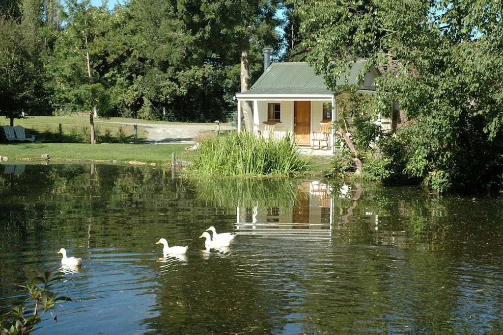 Lake Cottage Quot Coniston Quot Ashburton Flats For Rent In