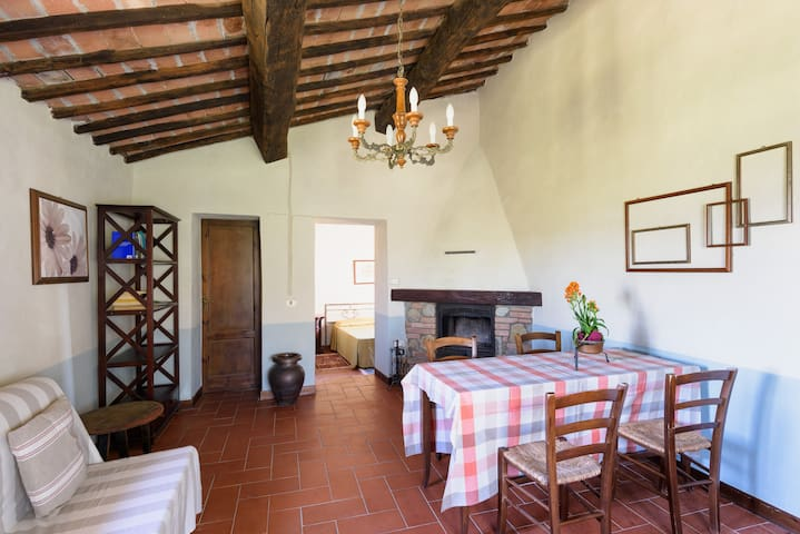 Apartments in the Chianti Classico - Castelnuovo Berardenga - Appartement