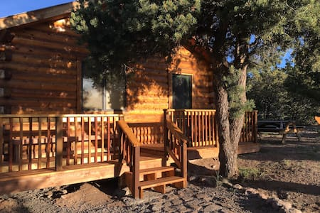 Cozy 1 Bedroom Cabin - South Fork