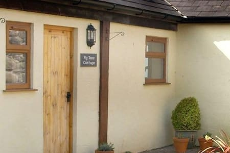 Fig Tree Cottage - Conwy - Ev