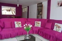 Sala con mueble de 3 cuerpos
