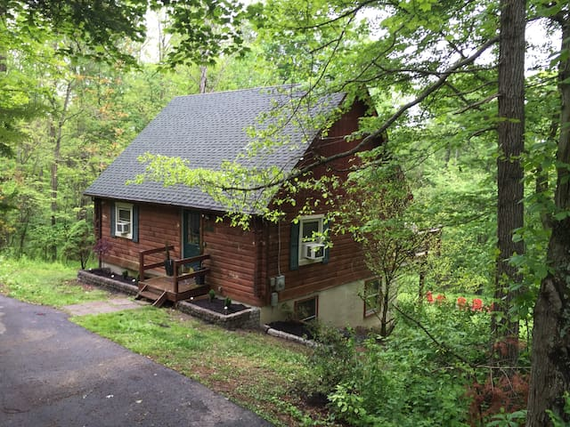 High-Tech Log Cabin in the Woods with WiFi - Berkeley Springs - Cabane