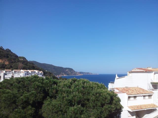 Triplex spacieux avec terrasse et vue sur mer