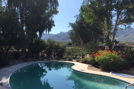 Beautiful Oro Valley hideaway on the golf course! - Wohnung