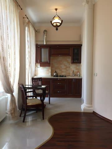 Квартира- студия на Дерибасовской.31