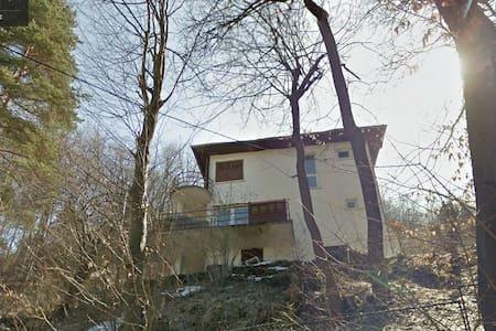 strobile house
