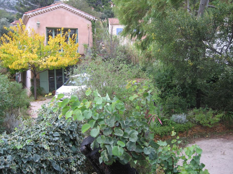 Vue villa et jardin