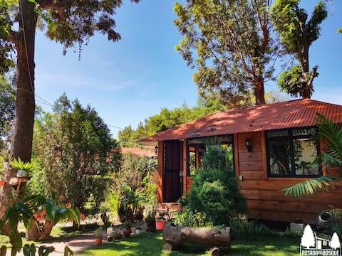 Posada Del Bosque - Resort In the Forest