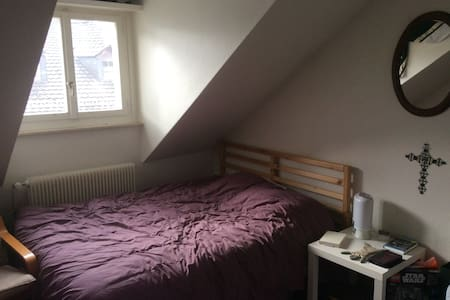1.5 Room Cosy Studio in City Centre - Sankt Gallen - Apartament