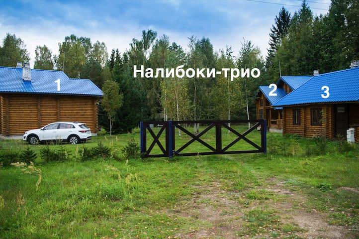 Налибоки-трио - хутор для отдыха семьями