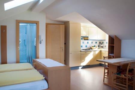 Appartments Tratter - Ferienwohnung Bozen - Salonetto - Wohnung