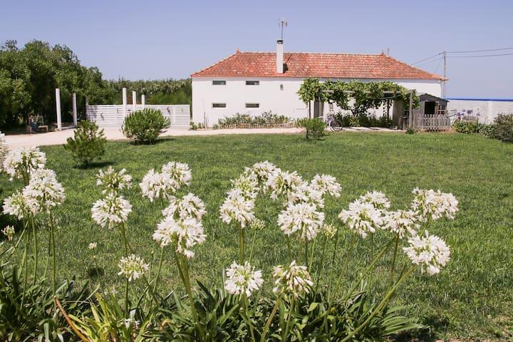 Quinta de S. Miguel, Costa Nova, Aveiro - Aveiro - กระท่อม