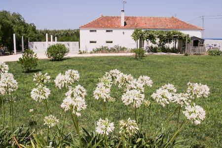 Quinta de S. Miguel, Costa Nova, Aveiro
