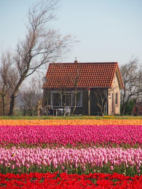 knusse bungalow met prachtig zicht