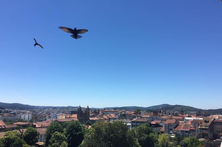 Loft com vista sobre a cidade