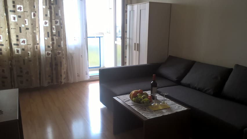 Directly on metro, 17 min from centre, balcony,2kk - Prag - Wohnung