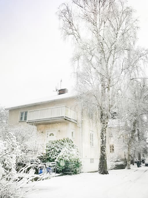 Lovely in the  winter!