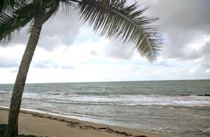 Dorado del Mar Beach Villa