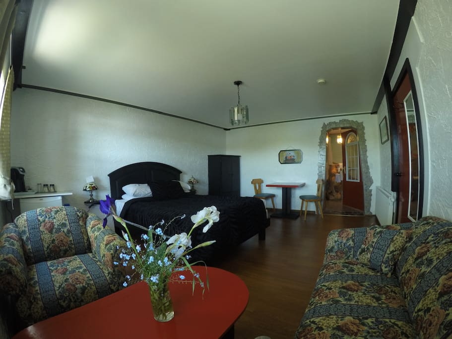 Large private and renovated bedroom with separate entrance.
