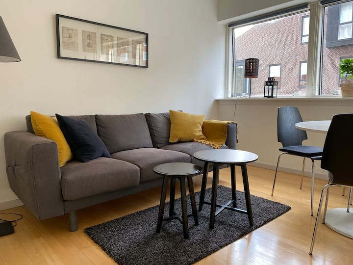 sh2.19,cozy 1 bedroom apt in suburb t0 central Cph