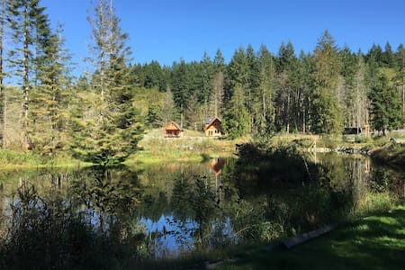Dragonfly Cottage - Lake Cowichan