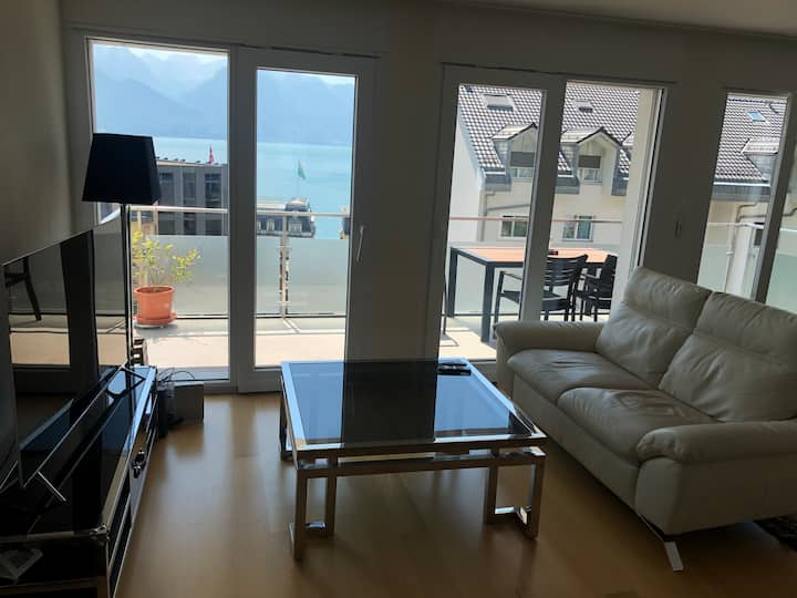 Room in Apartment with Lake View in Montreux