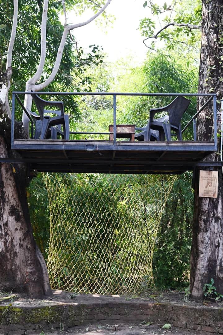Zorba Woods Resort (Pench, Buffer area)