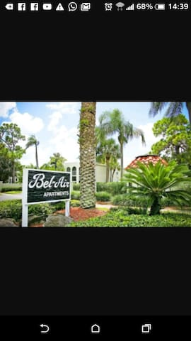 St. Pete room in apartment for rent