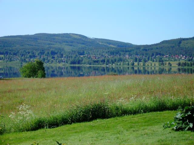 Härbre nära Siljan